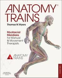 anatomy train